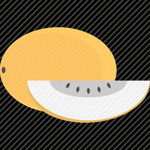 cantaloupe, fruit, honeydew, melon, organic food icon
