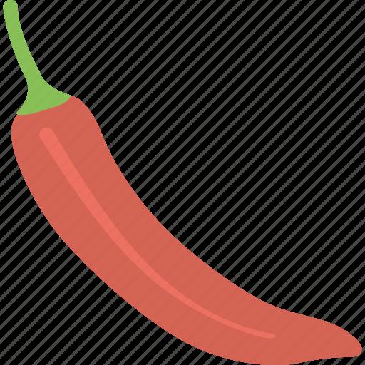 green chilli, green pepper, hot pepper, organic food, vegetable icon