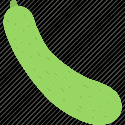 Vegetable, bottle gourd, lauki, lagenaria siceraria, organic food icon - Download