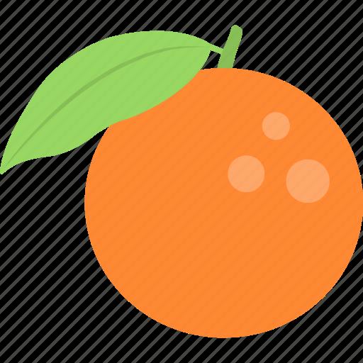 food, healthy diet, orange, organic fruit, winter fruit icon