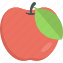 apple, fruit, healthy diet, nutrition, organic food icon