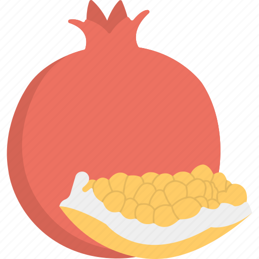 food, healthy diet, nutrition, organic fruit, pomegranate icon