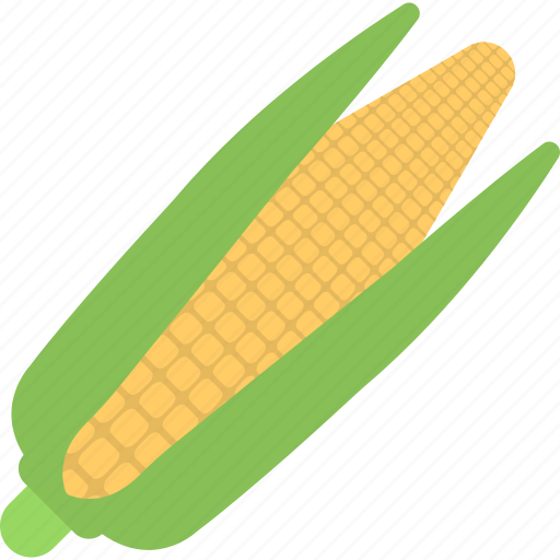 corn cob, food, maize, organic food, sweet corns icon