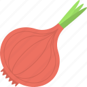 cooking ingredient, food, onion, spice, vegetable icon