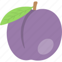 fresh fruit, healthy diet, cherry plum, organic food, nutrition
