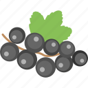 bilberries, blueberries, currant, healthy diet, organic fruit icon