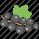 bilberries, blueberries, currant, healthy diet, organic fruit