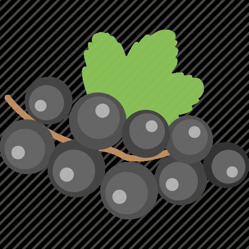 bilberries, blueberries, currant, healthy diet, organic fruit icon