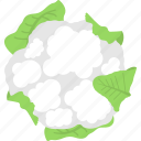 cauliflower, diet, healthy eating, organic food, vegetable icon