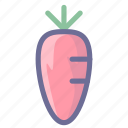 carrot, cooking, food, radish icon
