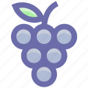 berries, flavor, food, fruit, fruits, grape, grapes, slot icon