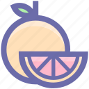 citrus, food, fruit, natural, orange, organic icon