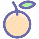 citrus, food, fruit, natural, orange, organic