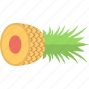 ananas, fruit, healthy diet, organic food, pineapple icon