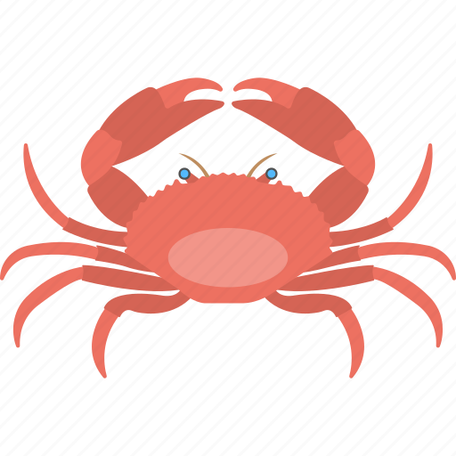 crab, food, mud crab, sea creature, seafood icon