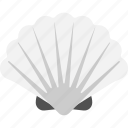 aquatic element, pearl box, precious, seashell, snail cover icon