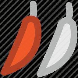 chili, green chili, paprika, pepper, spice icon