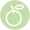 .svg, citrus, food, fruit, natural, orange, organic