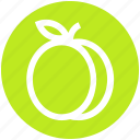 prune, food, apricot, plum, juicy, fruit, .svg icon