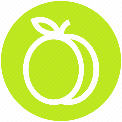 .svg, apricot, food, fruit, juicy, plum, prune icon