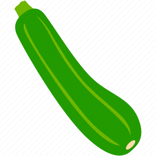 Healthy, organic, vegetable, zucchini icon - Download on Iconfinder