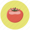 food, ingredient, tomato, tomatoes, vegetables icon