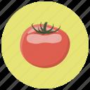 food, ingredient, tomato, tomatoes, vegetables icon