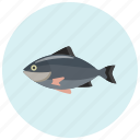fish, food, salmon, seefood, tuna icon
