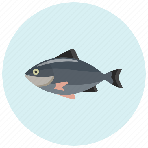 fish, food, salmon, seefood, tuna icon