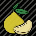 food, fruit, guava, half guava, tropical fruit