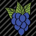 bunch of grapes, fruit, grapes, juicy fruit, organic diet