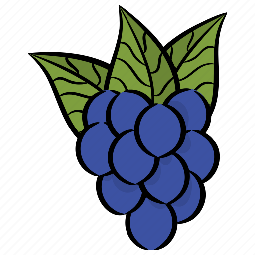 bunch of grapes, fruit, grapes, juicy fruit, organic diet icon