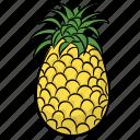 ananas, ananas comosus, organic food, pineapple, tropical fruit icon