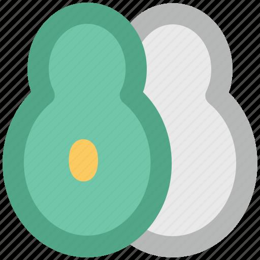 avocado, carica papaya, nutrition, papaw, papaya, pawpaw icon