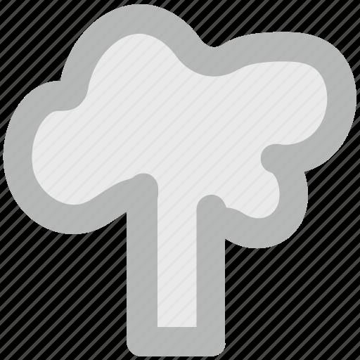 broccoli, cabbage, chard, food, vegetable, vegetarian food icon