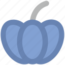 cucurbita maxima, cucurbita pepo, food, jicama, pumpkin, vegetable icon