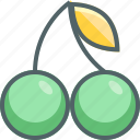 cherry, food, fresh, fruit icon