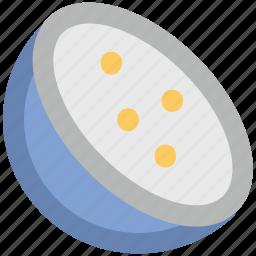 citrus, lemon, lemon slice, lime, orange slice icon