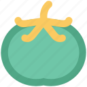 food, healthy diet, persimmon, persimmon fruit, plum, plum fruit icon