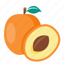 apricot, food, fruit, ripe icon
