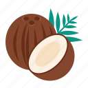 coconut, nut, palm icon