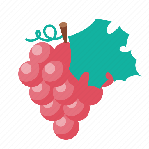 Image result for grapes and raisins icon