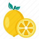 citrus, food, fruit, lemon icon