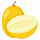 food, melon, melon field, melon half icon