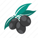 food, olives icon