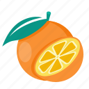 food, orange, citrus
