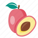 food, fruit, plum icon