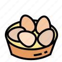 chicken, eggs icon