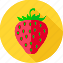 food, fruit, health food, strawberry icon