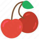 and, cherries, cherry, drink, food, fruit, pair icon